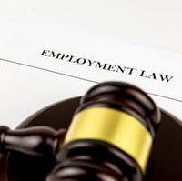 Employment6