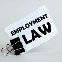 EmploymentLaw2